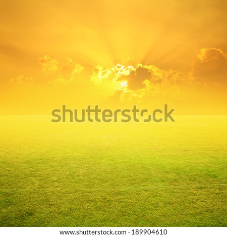 Grass fields and sunset  - stock photo