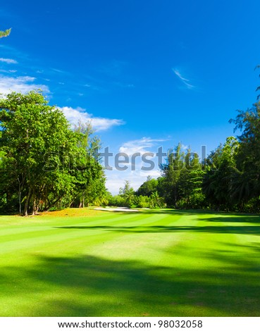Grass Fields Green - stock photo