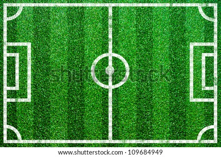 Grass football pitch.