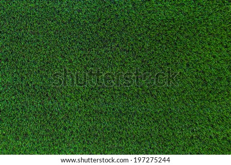 grass for background - stock photo