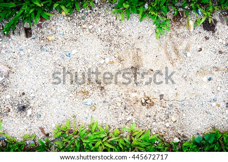 grass frame on sand background and texture