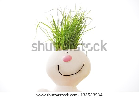 grass head isolated on white - stock photo