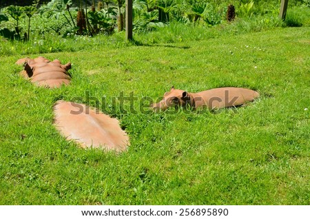 grass in England - stock photo