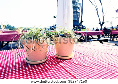 grass in pots on red picnic tablecloth