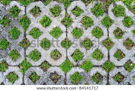 Grass in the holes of brick pattern - stock photo
