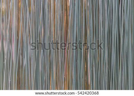 imperata cylindrica as papers essay Read this essay on cogon grass as heat insulator come browse our large digital warehouse of free sample essays get the knowledge you need in order to pass your classes and more.