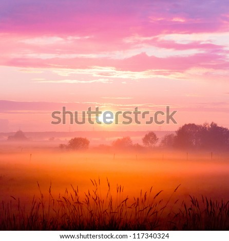 Grass Land Day Ends - stock photo