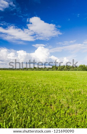 Grass Land Nobody Outside - stock photo