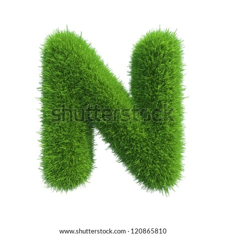 grass letter N isolated on white background - stock photo