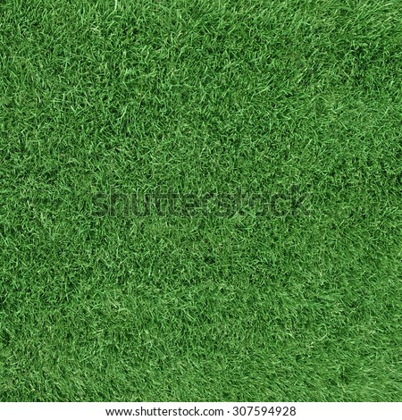 Grass meadow, view from top - stock photo