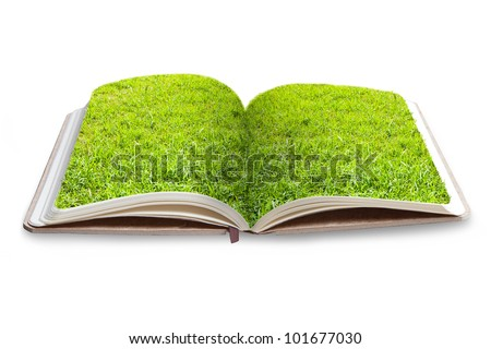 Grass on book - stock photo