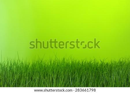 grass on green bokeh background - stock photo