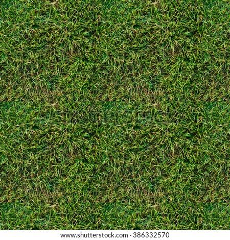 grass pattern - stock photo