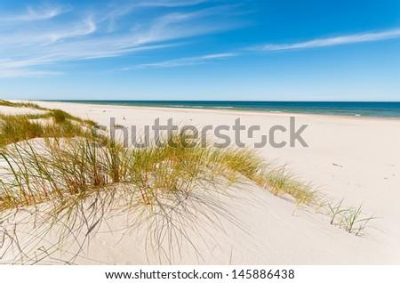 Grass sand dune beach sea view, Leba, Baltic Sea, Poland - stock photo
