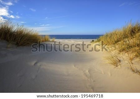 Grass sand dune beach sea view white clouds sunny blue sky, Leba, Baltic Sea, Poland - stock photo