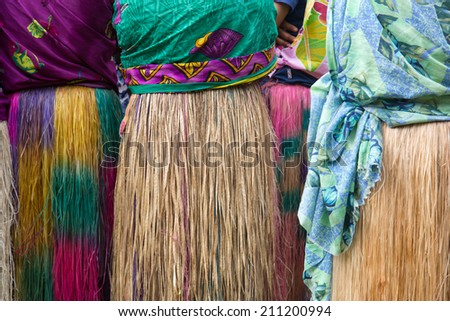 Grass Skirt - stock photo