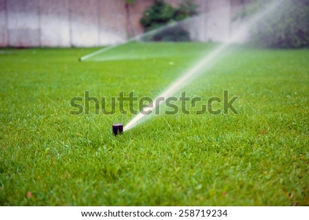 Grass Sprinkler closeup photo in the garden with grass - stock photo