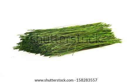 Grass sprouts isolated on white in the studio