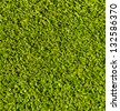 grass texture for background&wallpaper - stock photo