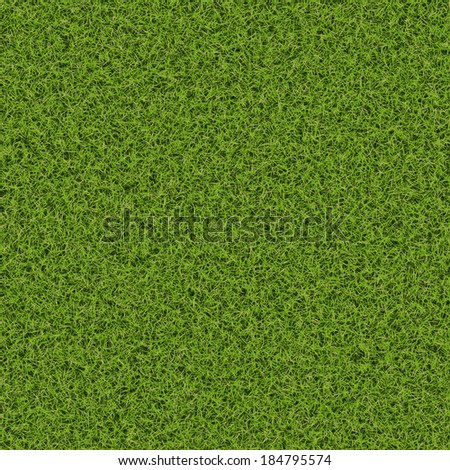 Grass Texture From Top View - stock photo