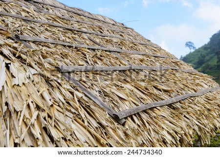 Grass thatched house roof - stock photo