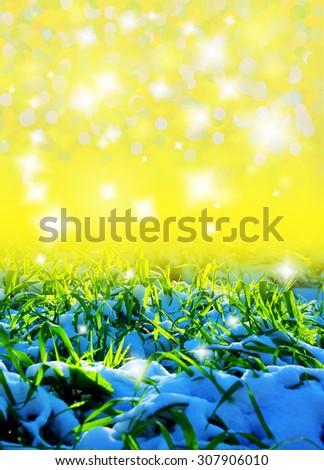 grass under snow background - stock photo