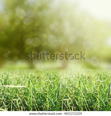 Grass with sun and bokeh background