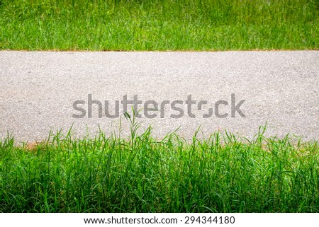 Grasses and road, abstract background - stock photo