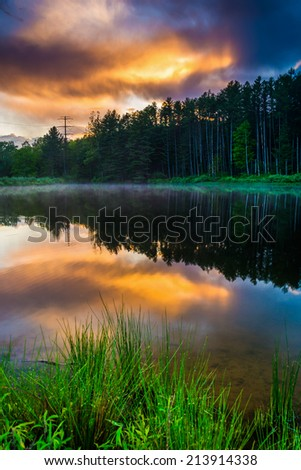 Grasses and sunset sky reflecting in a pond at Delaware Water Gap National Recreational Area, New Jersey. - stock photo