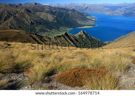 grassland above lake Hawea, New Zealand - stock photo