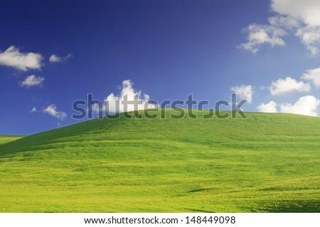 Grassland and blue sky - stock photo