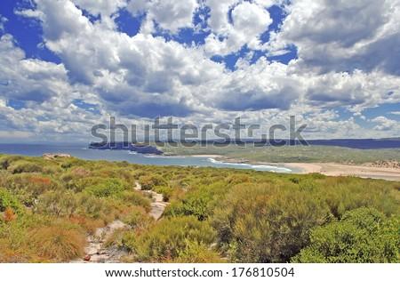 Grassland and Bluffs on Coastal Walking Track near Sydney, New South Wales Australia - stock photo