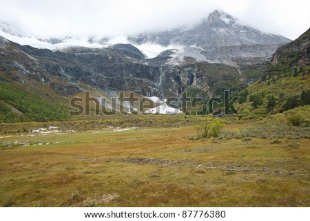 Grassland with snow mountain