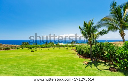 Grassy Green Field, Lawn and Ocean View - stock photo
