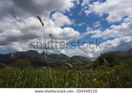 Grassy landscape and mountains against cloudy sky - stock photo