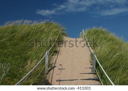 grassy path leading to beach on Prince Edward Island - stock photo