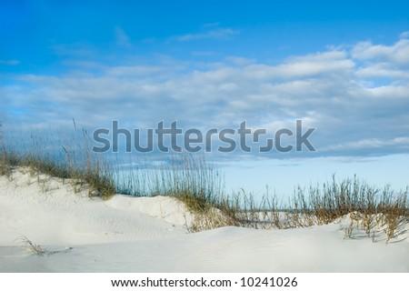 Grassy sand dune ridge - stock photo