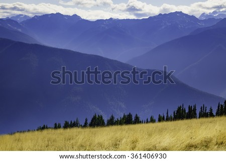 Grassy subalpine meadow and line of firs in foreground of majestic vista of Olympic Mountains, as seen near the Hurricane Ridge Visitor Center in Olympic National Park on a hazy morning in September - stock photo