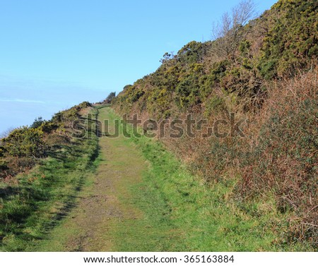 Grassy Track on the Side of a Hill in Heddon Valley within Exmoor National Park on the North Coast of Devon, England, UK - stock photo