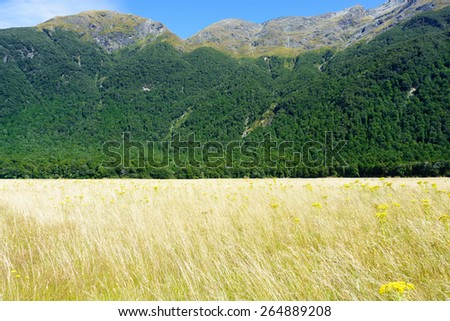 Grassy valley floor surrounded by Humboldt mountain range in New Zealand's Southern Alps. - stock photo