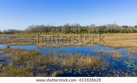 Grassy Waters Nature Preserve Weather