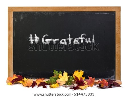 Grateful written in white chalk on a black chalkboard isolated on white