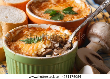 gratin chicken with mushrooms on the table horizontal macro. rustic style  - stock photo