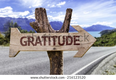 Gratitude wooden sign on a beautiful day - stock photo
