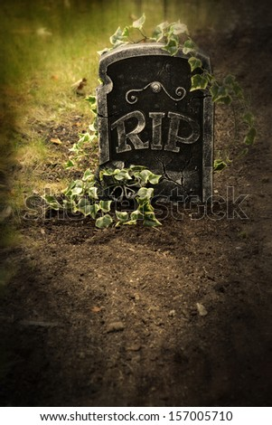 Grave with ivy - stock photo
