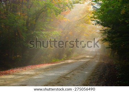 Gravel road in the early morning fog, Stowe, Vermont, USA. - stock photo