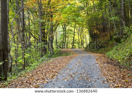 Gravel Road in the Mountains - stock photo