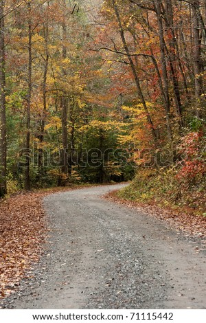 Gravel road with Fall colors in Elljay Georgia.