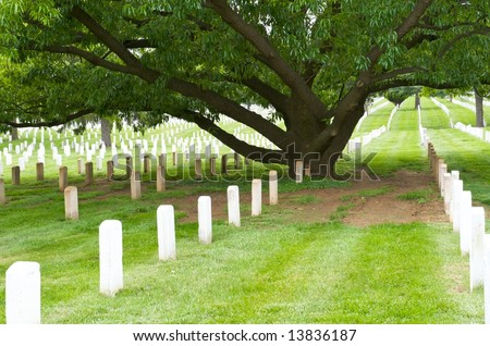 Graves and gravestones at Arlington National Cemetery - stock photo