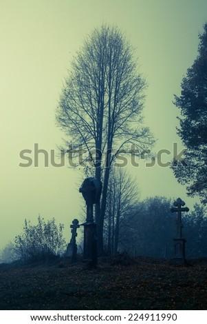 Graveyard in the mist - stock photo